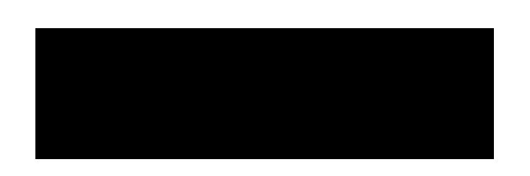 Drang Aesthetics Wordmark Logo